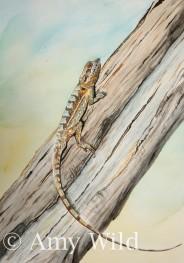 Reptile art