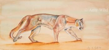 Big cat art, watercolour, mountain lion