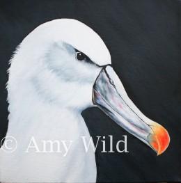 Bird Art, biological art