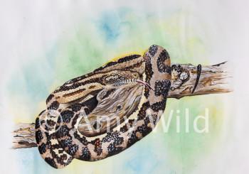 Carpet python painting