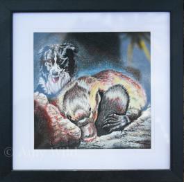 platypus dog drawing
